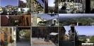 Kleine erste Runde durch die Weinberge, erster Stop in Monforte d'Alba